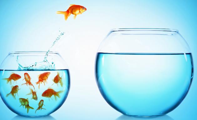 Maximizar oportunidades e minimizar os riscos: a importância da estratégia